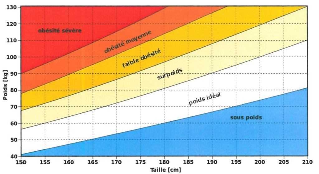 graphique IMC