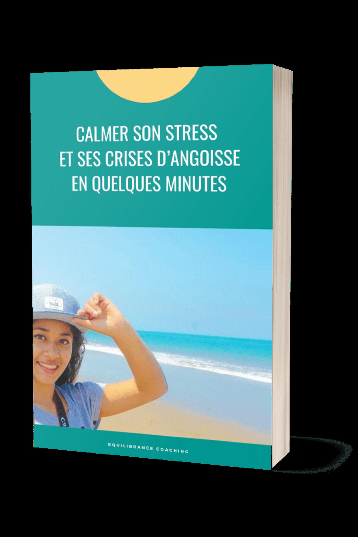 ebook gerer stress equilibrance coaching